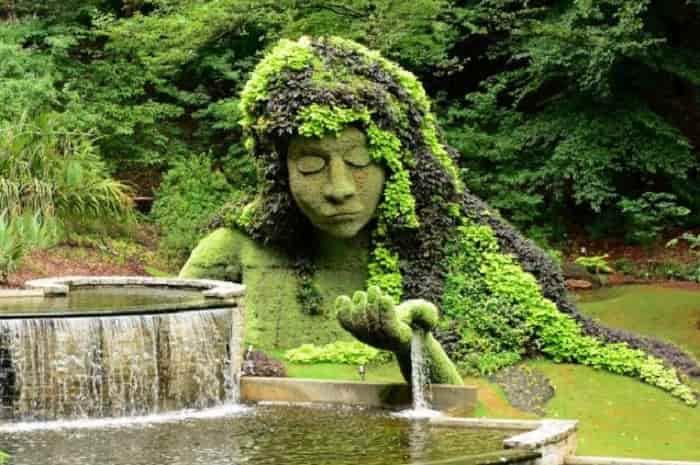 Indian Botanical Garden