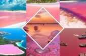 Pink Lakes From Around the World